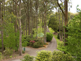 Mount Lofty Botanic Garden - Accommodation in Bendigo