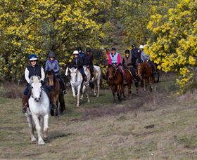 Burnelee Excursions on Horseback - Accommodation in Bendigo