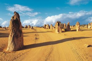 Pinnacles Desert Koalas and Sandboarding 4WD Day Tour from Perth - Accommodation in Bendigo
