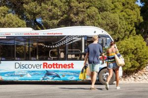 Rottnest Island Tour from Perth or Fremantle including Bus Tour - Accommodation in Bendigo
